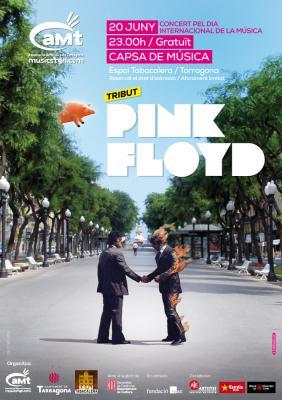 """""""SHINE ON"""" homenatge als PINK FLOYD de l'aMt"""